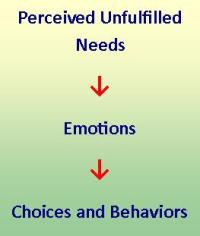 Needs-Feelings-Behaviors